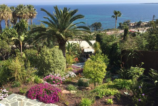 Aménagement d'un jardin exotique à Cannes