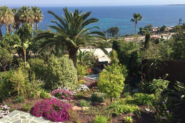 Ce jardin, sur les hauteurs de Cannes, a été réalisé dans l'esprit d'un aménagement de nature sublimée : concept basé sur une grande diversité de végétaux 6